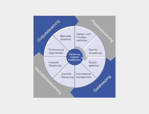 Handlungsoptionen zur Steuerung digitaler Plattformen